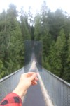 "Kamy Monfared, ""Capilano Suspension Bridge"", 2012"