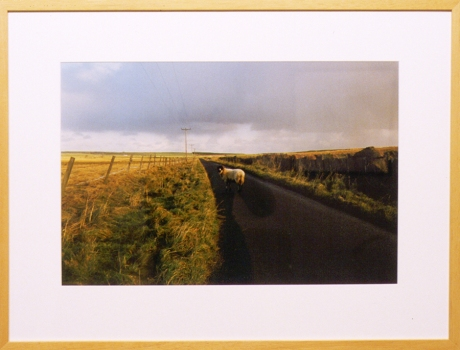 By Land and Sea (Prospect and Refuge): On the road near Auchingills, Sordale, Caithness
